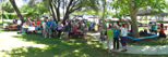 Panoramic view of picnic